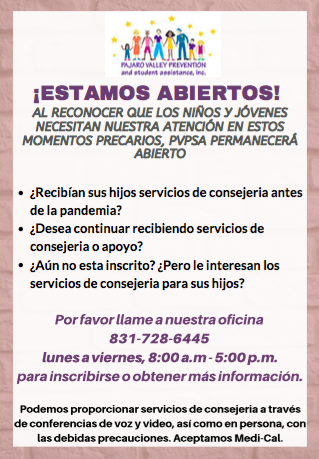 PVPSA we are open flyer in Spanish